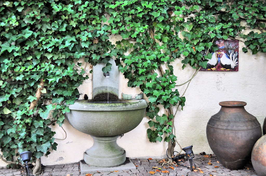 View B & B - Park - Bed & Breakfast - Margrit Küng, 8200 Schaffhausen